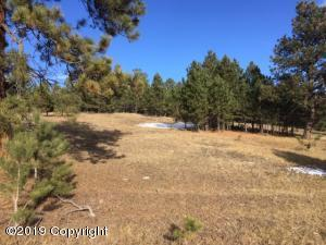 Reminton rd tract