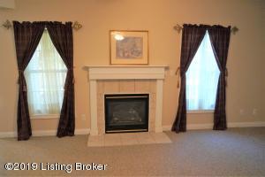 lower room fireplace blossom cr